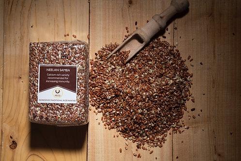 Neelan Samba (Raw Rice) - நீலன் சம்பா (பச்சரிசி)
