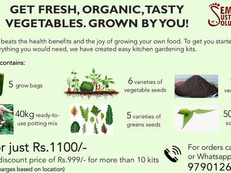 Kitchen Gardening Kit Available Just Rs.1100