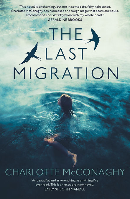 The Last Migration Cover.jpg