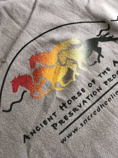 Sacred Healing Circle Ancient Horse of the Americas Preservation Program