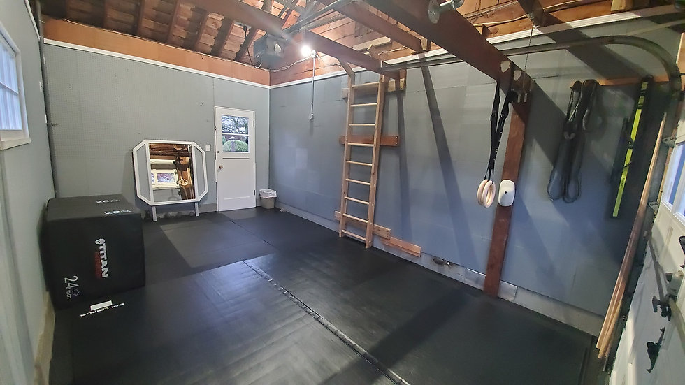 A photo of garage gym space, Options & Ability.