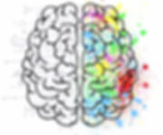 brain2_edited.jpg