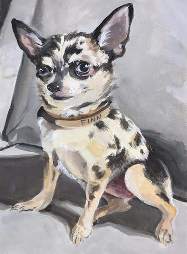 Finn the dog