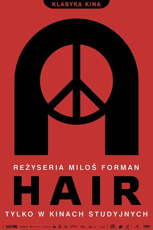 Hair - plakat