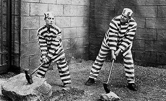 więzień nr 13.jpg