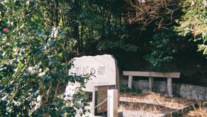 島田市田代地区の自然環境保全対策に関するPR