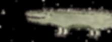 Krokodil_edited.png