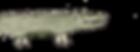 Krokodil_edited_edited.png
