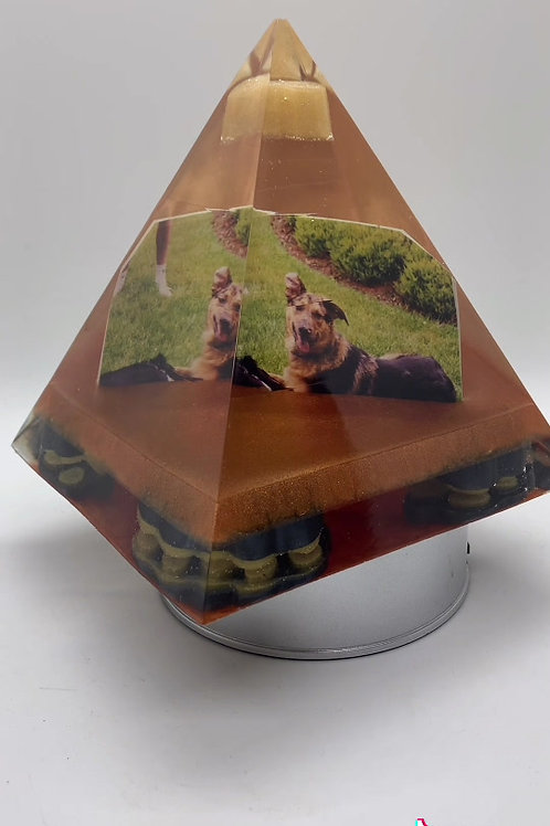 Memorial Orgone with pictures PETS
