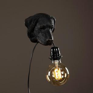 Lampa Hund