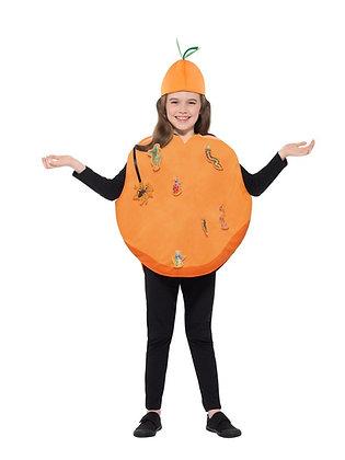 James & The Giant Peach Children's Costume Small/Medium