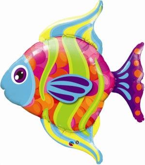 Colourful Fish Super Shape