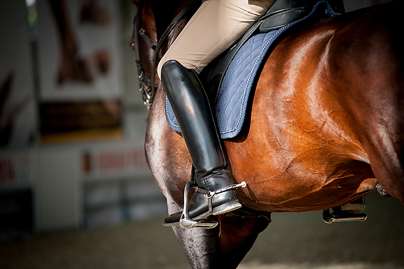 Equestrian Horse riding boot and accessory bags
