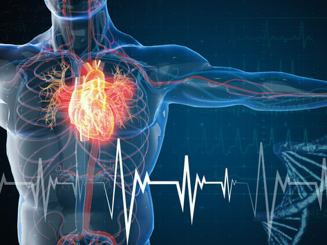 How the spine can help the heart