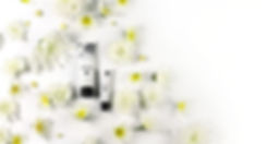 marin_bee_wedding_banner v4 copy.jpg