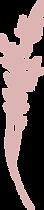 Silverlane Logo.png