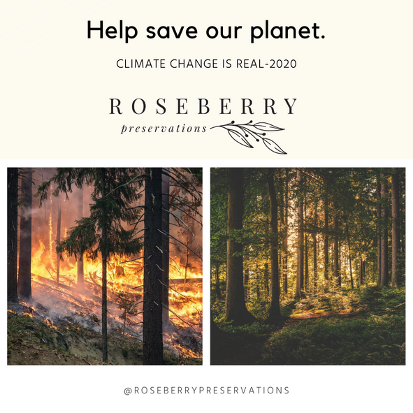help-save-our-planet-rp.png
