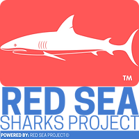 Red Sea Sea-grass Project.png
