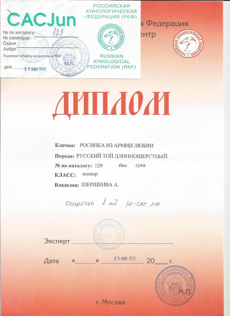РОСЯ 3.jpg