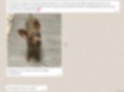 Снимок экрана (1366).png