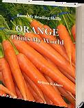 Orange Paints_Cover_3D.png