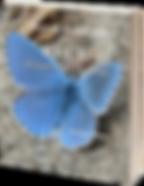 Blue Paints_Cover_3D.png