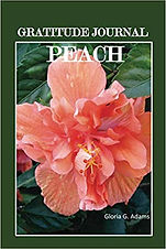 Gratitude journal_peach.jpg
