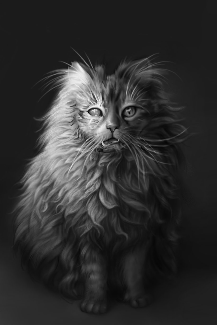 Pet_Semetary2.jpg