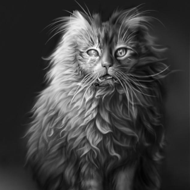 Pet_Semetary.jpg