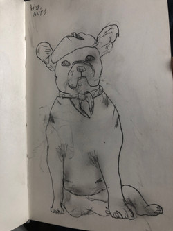 Bulldog by Avry Hatton