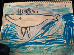 Humpback by Jace Ausnes