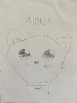Cats are Fluffy by Audrey Sallette