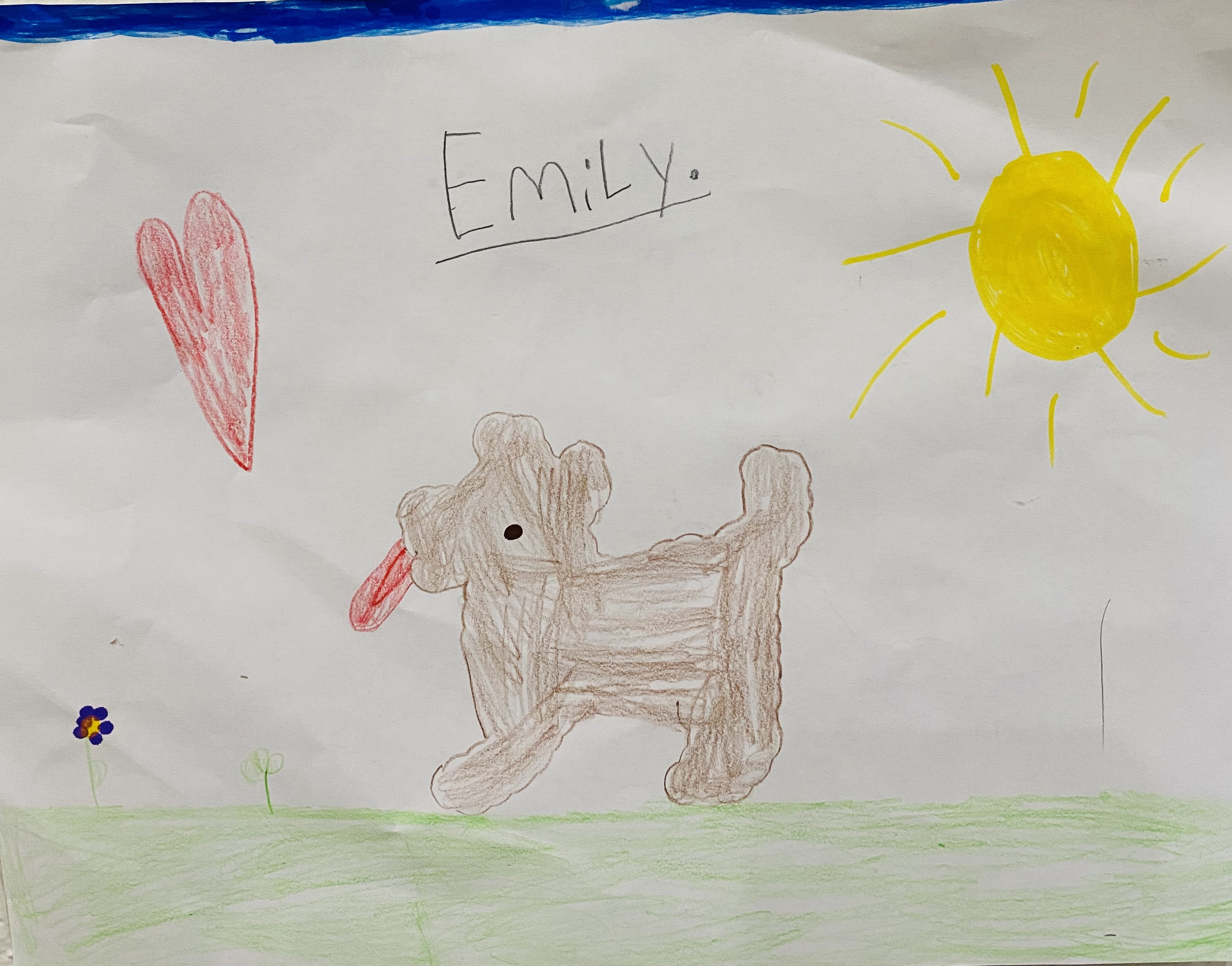 Brady by Emily Sallette