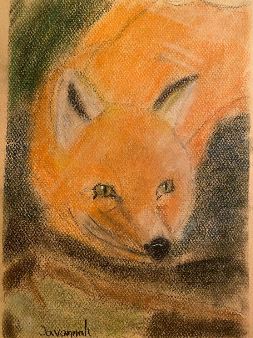 The Resting Fox by Savannah Calero