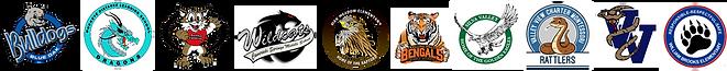 Logo Bar 10.png