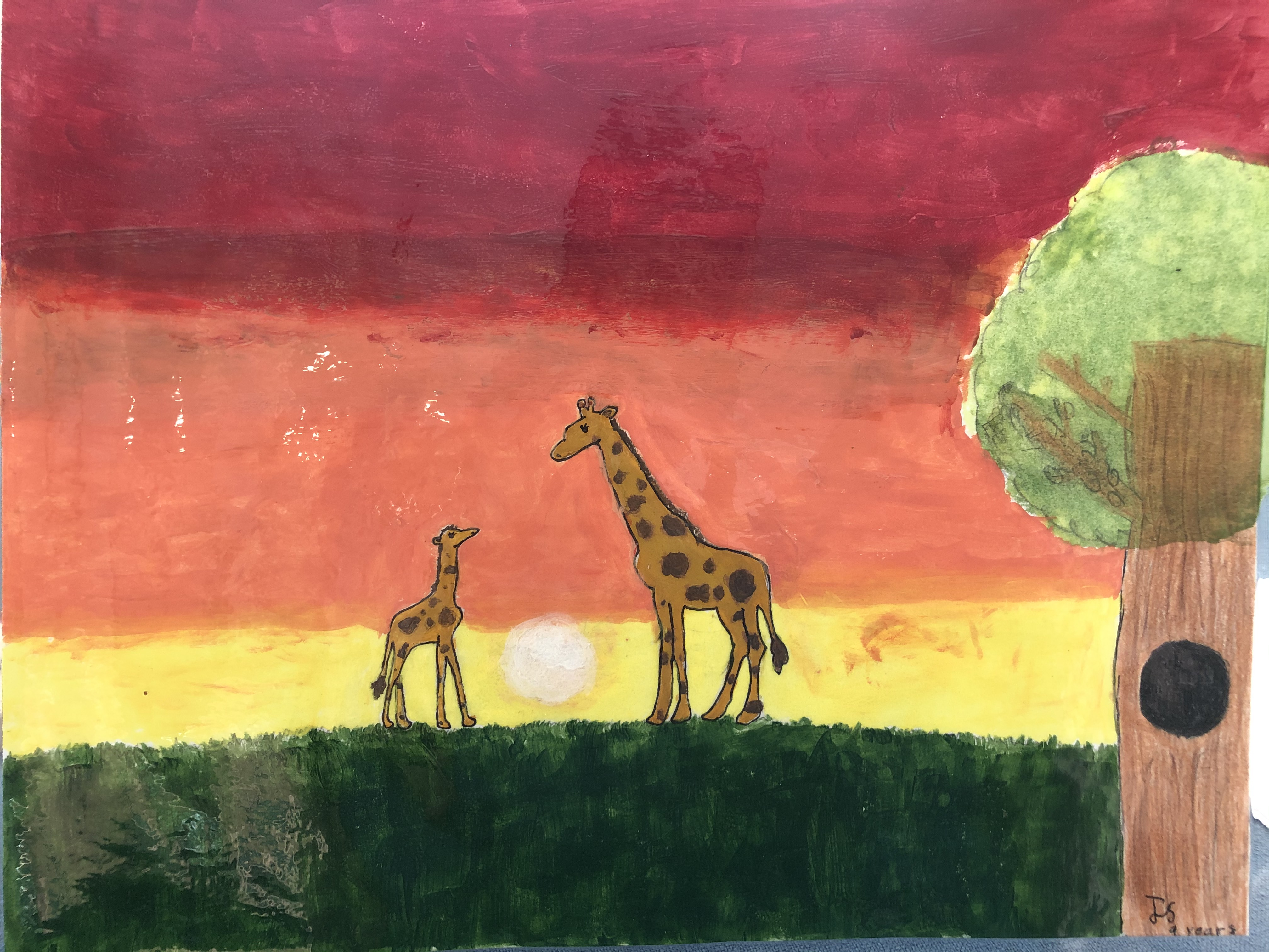 Sunsets in the Wild by Jenna Spong