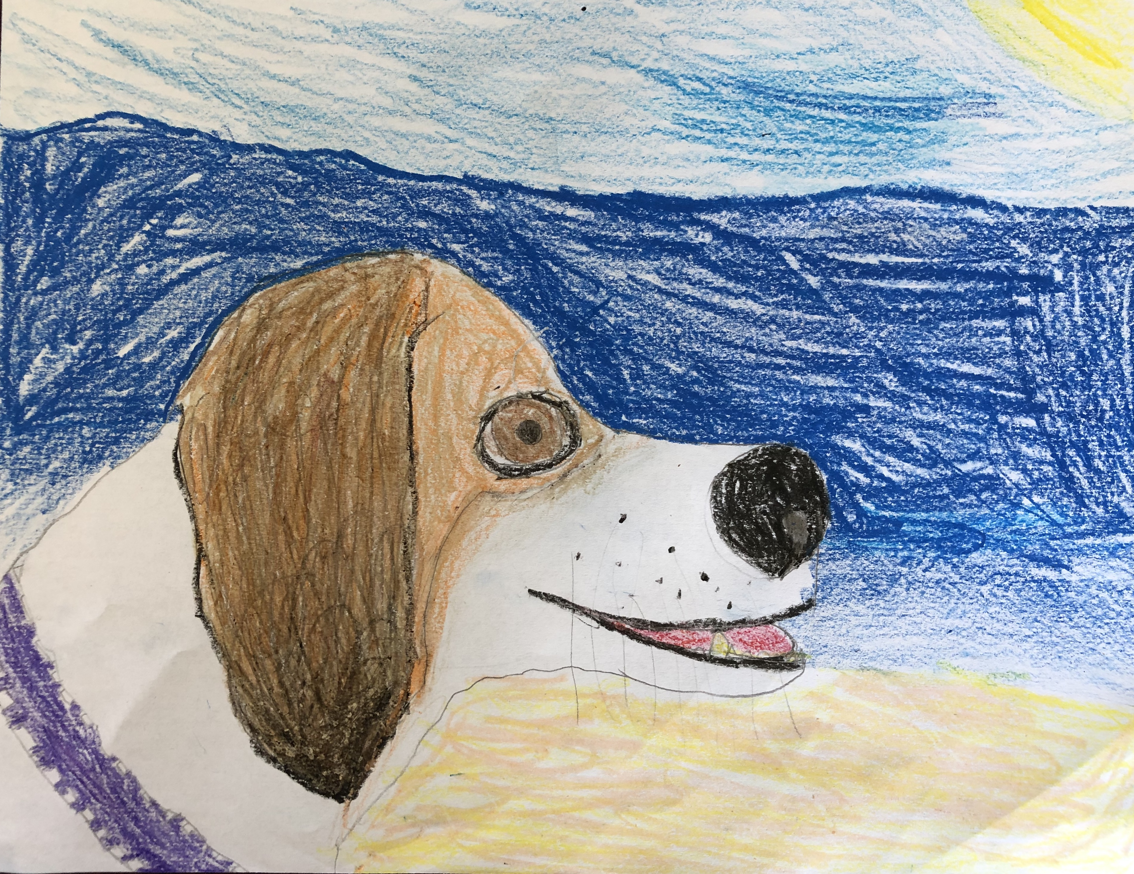Dog at the Beach by Logan Brewer