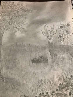 Deer in the Meadow by Dasia Taylor
