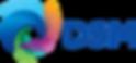 DSM_SimplifiedLogo_300.png
