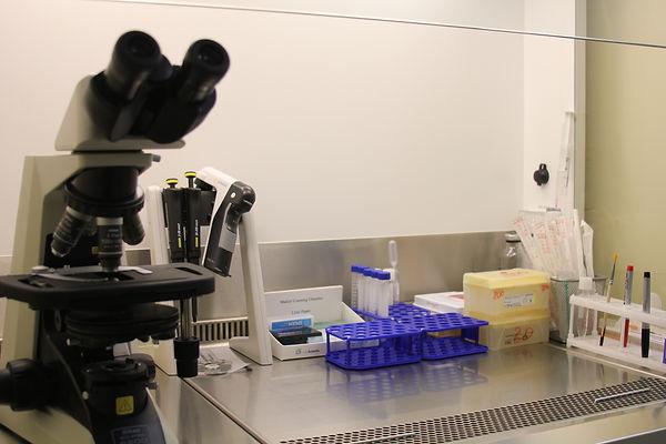 Микроскоп и пробирки