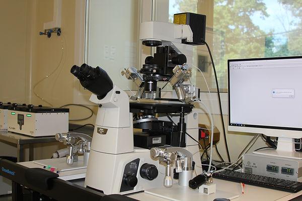 Микроскоп для ИКСИ