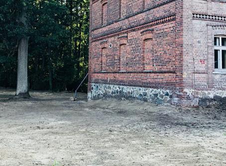 Zielnik Uroczyska - Biała morwa.