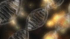 Анеуполидия при невынашивании, генетические аспекты неразвивающейся беременности
