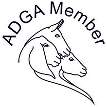 adga-member-only-logo-web-300x300.jpg