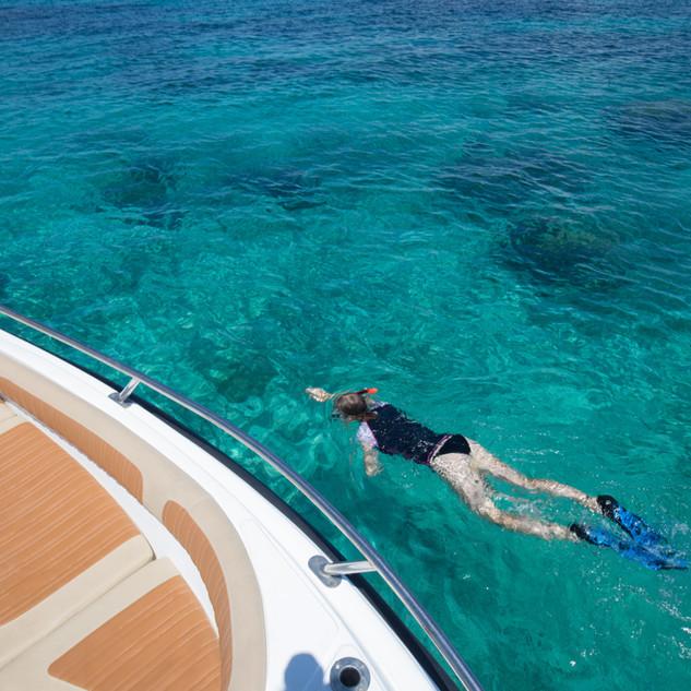 Snorkelling trips