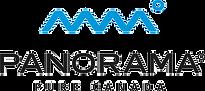 Panorama Logo copy_edited.png