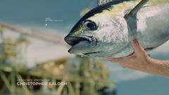 SPORT FISHING TV