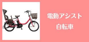 ボタン_電動アシスト_B.jpg