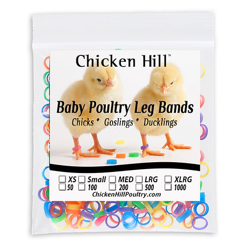 Baby Poultry Leg Band Medium Size 4 Mixed Color Pack of 100