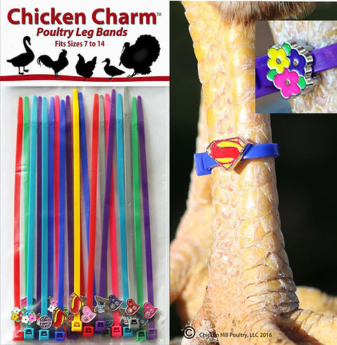 Chicken Charm® Poultry Leg Bands